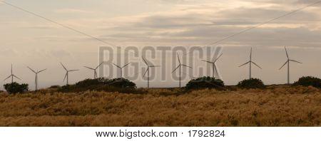Line Of Wind Power Generators