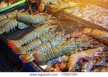 Variety Of Grilled Seafood In Kota Kinabalu Night Market In Kota Kinabalu, Sabah Borneo, Malaysia. S