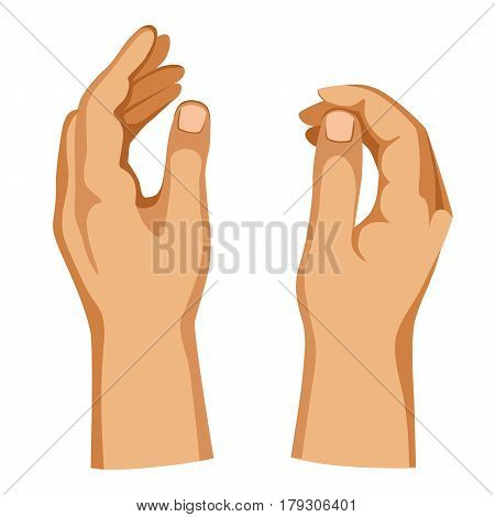 Two man hands isolated on white background in different positions vector illustration