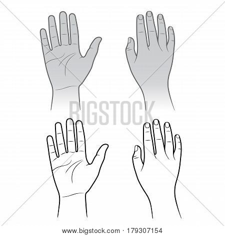 Woman man grey hands isolated on white (vector illustration)