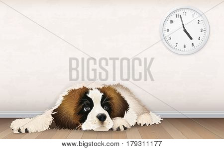 A sweet fluffy puppy is waiting for the owner to come home from work. A bored dog lies on a wooden floor.