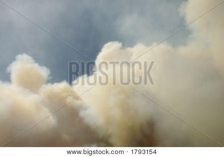 Angora Fire 3