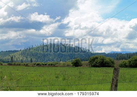 Green Field and Hills Beyond a Barbed Wire Fence