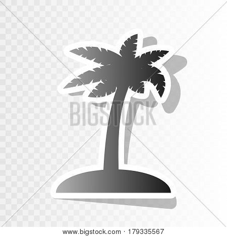 Coconut palm tree sign. Vector. New year blackish icon on transparent background with transition.
