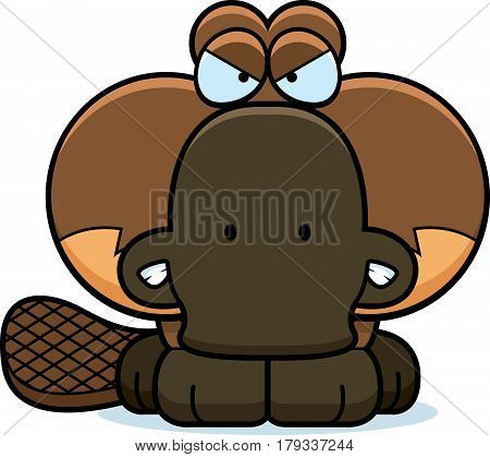Cartoon Angry Platypus