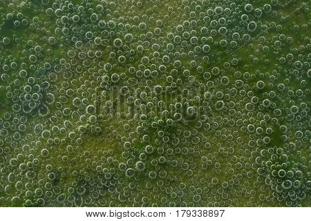Close-up Of Green Shades Background Of Air Bubbles In The Mud In The Water, Quaint Texture.