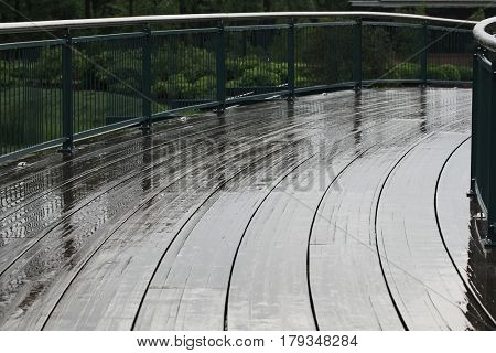 Wet boardwalk bridge curves across wetland on a rainy day