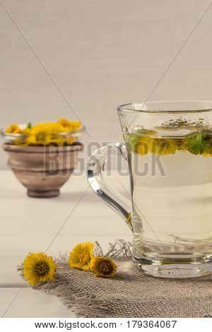 Cup of herbal tea with coltsfoot (or Tussilago) flowers