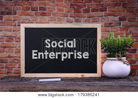 Social Enterprice Word On Blackboard With Green Plant.