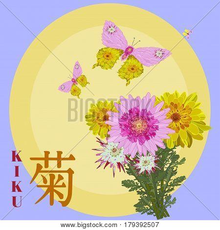 Vector illustration of Chrysanthemum and butterflies. Chrysanthemum kiku sun hieroglyphics in japanese. Flat style design.