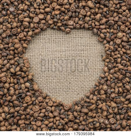 Many small acorns as a frame in the shape of heart
