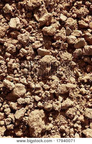 Clay red agriculture textured soil of farm land