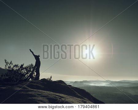 Broken Wilde Pine Bonsai Tree On Rocky Cliff. Sun At Horizon