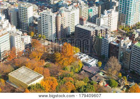 Tokyo city aerial view during autumn season Japan