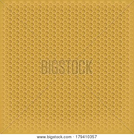 vector honey in the comb. the background image for your design
