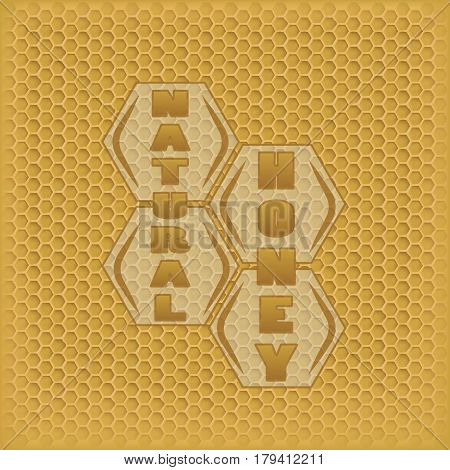 vector honey in the comb. geometric sign natural honey. background from the honeycomb