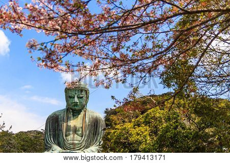 The Great Buddha (Daibutsu) on the grounds of Kotokuin Temple in Kamakura Japan.