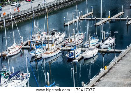 White Sailboats Docked in a Seattle Marina