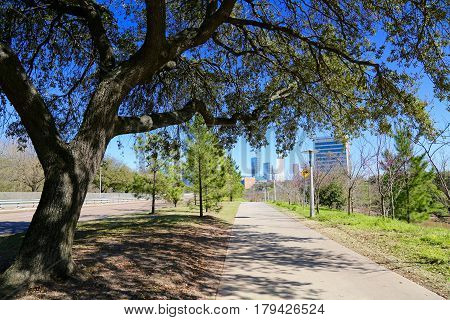 Spring has sprung in Houston, TX 2017