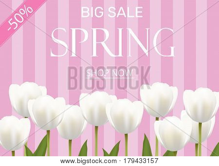 Spring sale illustration with white vector flowers tulips. Light pink striped background bokeh effect. Banner poster flyer poster invitation card.