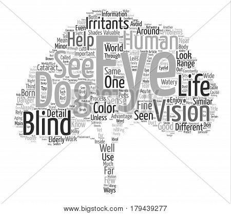 Through the Eyes of Your Dog Word Cloud Concept Text Background