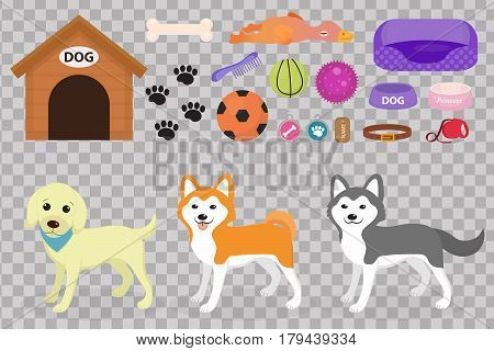 Dogs stuff icon set with accessories for pets, flat style, isolated on white background. Domestic animals collection with a Husky, akita inu, lablador. Puppy toy. Vector illustration, clip art