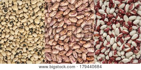Dry White And Pinto Beans Background