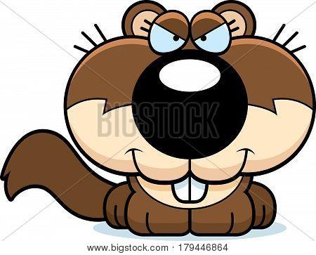 Cartoon Sly Squirrel