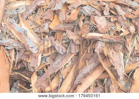 Discard From Lumber Industry, Close Up, Natural Coarse Raw Wood Background.