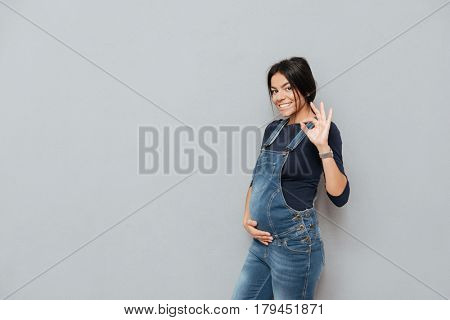 Image of happy pregnant lady standing over grey background and make okay gesture. Looking at camera.