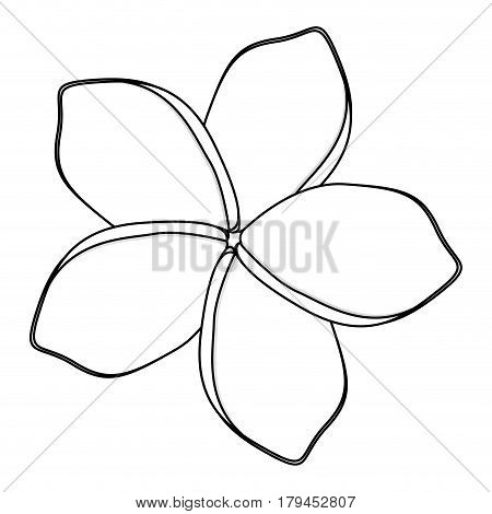 silhouette flower with oval shaped petals vector illustration