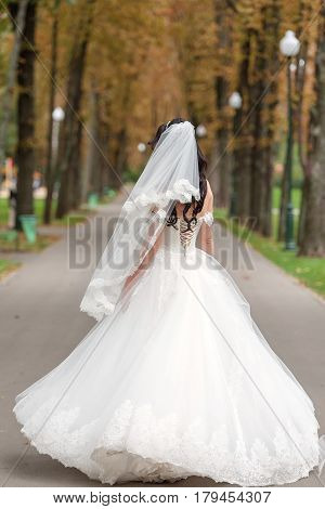 Bride in white dress is spinning in an alley in the park. Happy bride in a wedding dress is spinning.