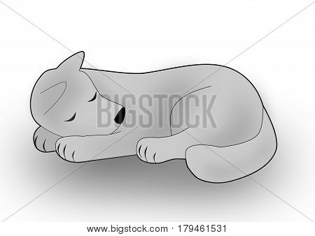 A gray dog or wolf lying curled up and sleeping