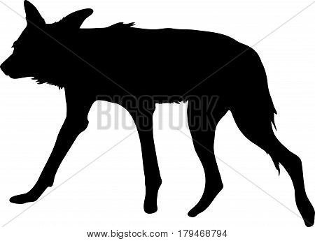 Silhouette of a hungry and nervous wild dog, hand drawn vector illustration isolated on white background