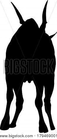 Silhouette of a standing eland antelope, hand drawn vector illustration isolated on white background