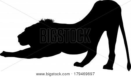 Silhouette of a lion predator, hand drawn vector illustration isolated on white background