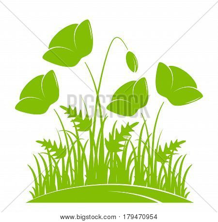 vector clump of corn poppies in grass isolated on white background