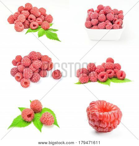 Collage of raspberries with leaves on white