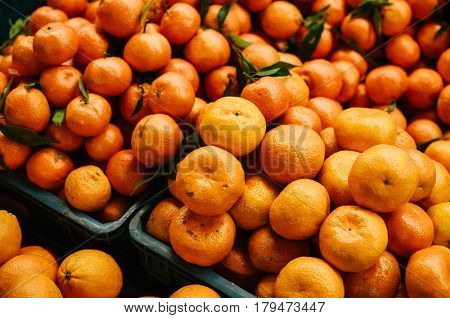 Many tangerines on the farm market on the farm market. Citrus. Products rich in vitamins. Natural local products on the farm market. Harvest. Seasonal products. Food.
