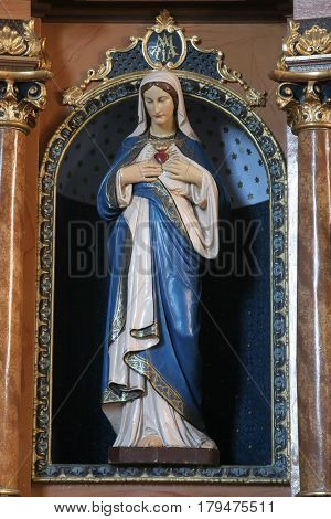 MARTINSKA VES, CROATIA - JUNE 03: Immaculate heart of Mary statue on the altar in Parish Church of Saint Martin in Martinska Ves, Croatia on June 03, 2011.