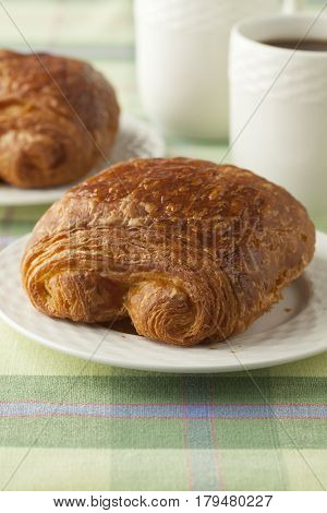 Fresh French chocolat croissant for breakfast