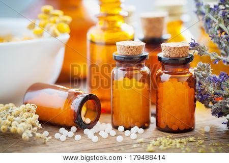 Bottles Of Homeopathic Globules, Mortar, Healing Herbs And Flowers. Homeopathy Medicine Concept.