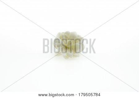 Jasminum sambac flower Isolated on White Background