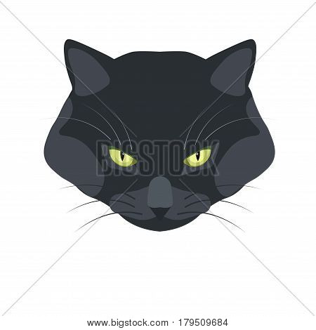 Bombay black cat breed close-up portrait on white. Vector illustration in flat design with white background of dark domestic animal head with bright eyes, big cheeks and angry look isolated.