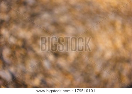 Bright orange brown spotty sunlit background with unusual vintage swirly bokeh