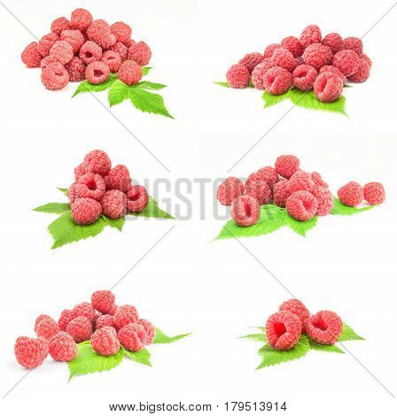 Group of rubusberry on a white background