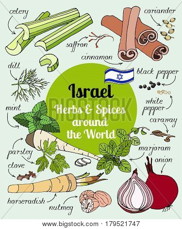 Vector set of hand drawn Israel herbs and spices. Organic food. Set of herbs and spices for design menu, banner and label. Spices and herbs used in Israel for cooking.