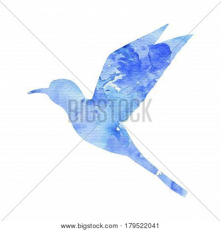 watercolor blue hummingbird silhouette, hand drawn songbird, isolated painting element