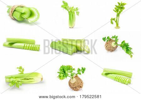 Set of celeriac isolated on a white background with clipping path