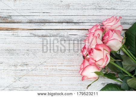 Pink roses on vintage white wooden background. Top view, copy space. Concept of Mother's day, Woman's day, holidays, gift.